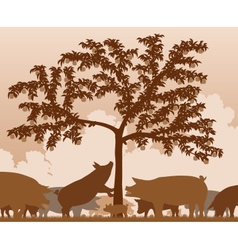 Foraging pigs vector image