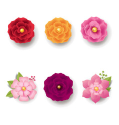 Spring flowers isolated white background vector