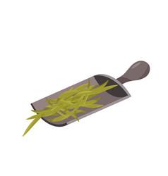 Wooden scoop with green tea leaves vector
