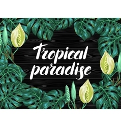 Background with monstera leaves Decorative image vector image vector image
