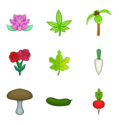 blossom icons set cartoon style vector image