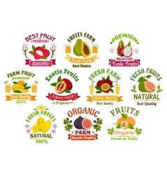 Fresh juicy fruits signs set vector image