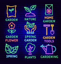 garden neon label set vector image