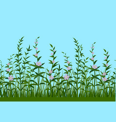 Grass and flowers seamless vector