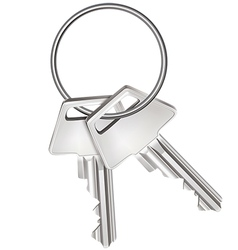 Keys isolated on white vector