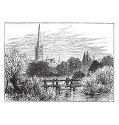 Salisbury cathedral vintage vector
