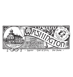 the state banner of washington the evergreen vector image