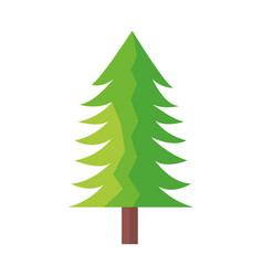 tree pine forest vector image