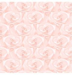Seamless pattern from pink roses vector image