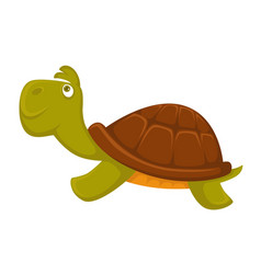 turtle cartoon pet flat icon vector image vector image