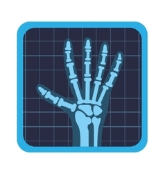 x rays test icon vector image