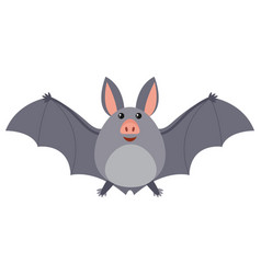 bat with gray wings vector image vector image