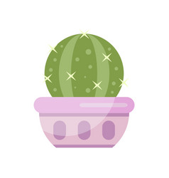 cactus house plant indoor flower in pot elegant vector image