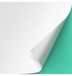 Curled corner of paper Isolated Green Background vector
