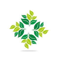 Leaves mashed drugs organic product icon vector