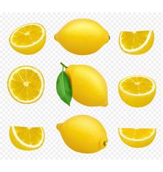 Lemons collection realistic picture citrus vector