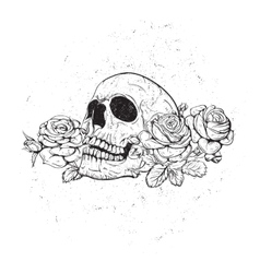 skull with roses vector image
