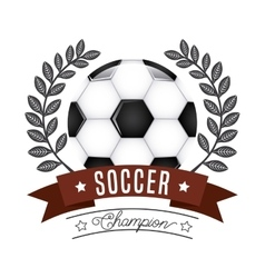 sport champion design vector image