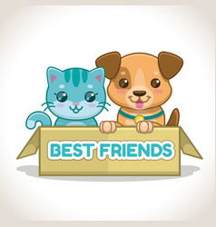 two little pets in box kitten and puppy vector image