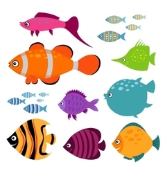 Cute fish set Smiling swimming aquarium vector image vector image