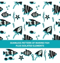 seamless pattern of marine fish plus isolated vector image vector image