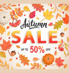 autumn big sale banner 50 percent discount card vector image