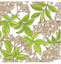 Elderberry branch pattern vector