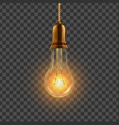 light bulb hanging decorative light bulb vector image