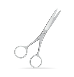 Metal Scissors vector image