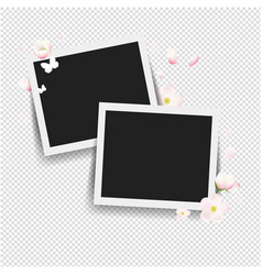 Photo with flowers transparent background vector