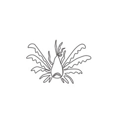 single continuous line drawing exotic stripped vector image