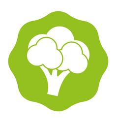 Sticker delicious broccoli healthy fruit vector