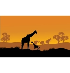 Wild african animals silhouettes vector image