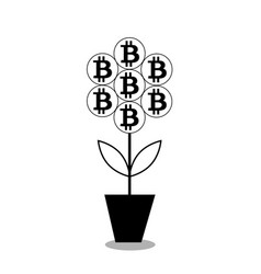 Bitcoin flower in the pot black silhouet vector
