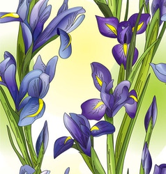 Blue irises vector image vector image