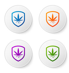 color shield and marijuana or cannabis leaf icon vector image