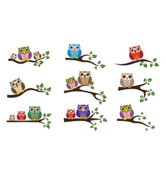 Colorful owl sitting on tree branch vector