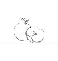 continuous line drawing apple with slice apple vector image