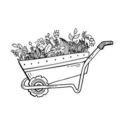 Doodle a garden wheelbarrow with plants and vector