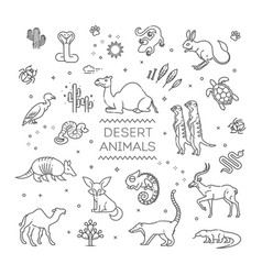 line wildlife concept with different desert vector image