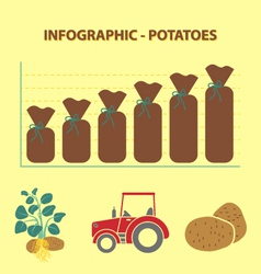 Potatoes infographic vector