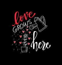 romantic love lettering love grows here vector image