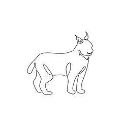 Single continuous line drawing stout lynx cat vector