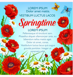 spring flowers poster springtime greetings vector image