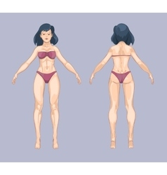 Woman or female body in cartoon style Front and vector