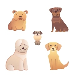 Collection cute different type of dogs small and vector image