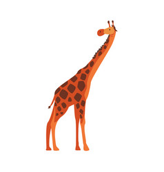 Cute giraffe jungle animal african safari travel vector