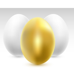 eggs set vector image