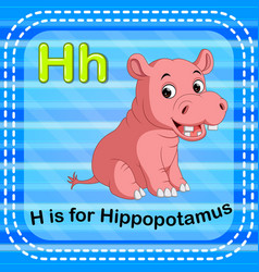 flashcard letter h is for hippo vector image