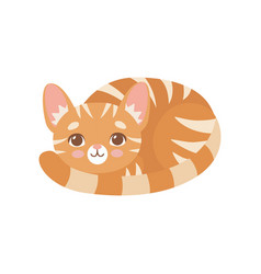 striped funny red cat lying curled up cute kitten vector image